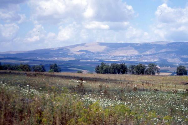Fra de blomsterhvite enger i Galilea. I bakgrunnen er Golan-høydene, åskanten der syrerne pepret Israel med raketter under oktober-krigen i 1967. I venstre billedkant ligger Libanon og Hizbolla noen kilometer oppe. Idyll og terror hånd i hånd, likelig fordelt, alle like skyldige. (Foto: Geir)