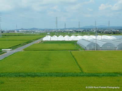 Typical view from the bullet train between Hiroshima & Osaka. Rice paddies + more