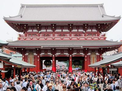 Sanja Festival Crowds - Tokyo, Japan