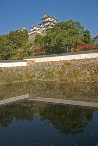 Murky pond near the Himeji Castle in Japan