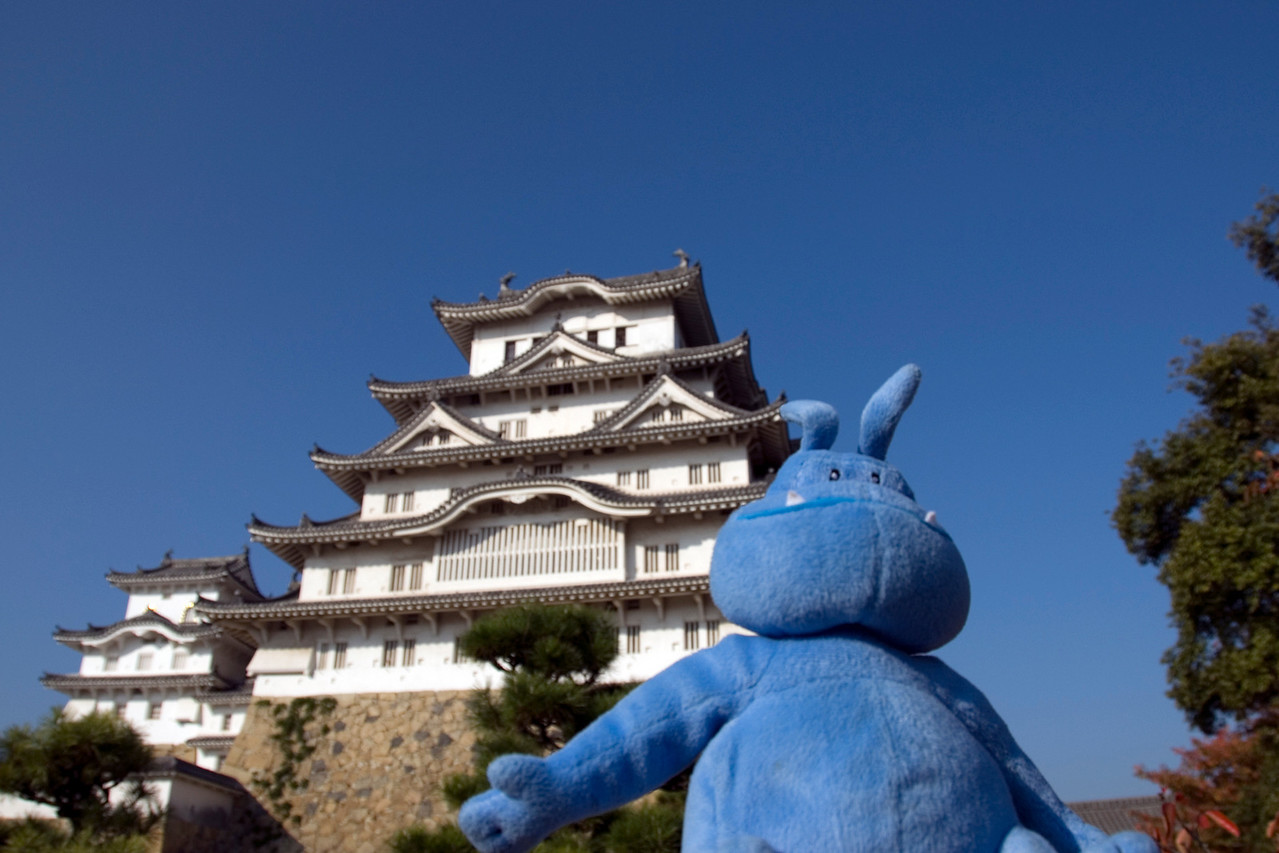 Skull posing in front of camera with Himeji Castle in the background
