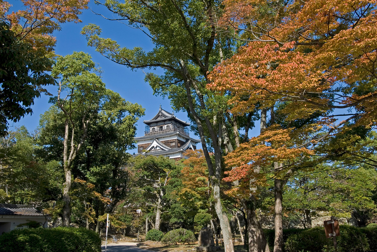 Hiroshima Castle peeking out the trees during Autum in Hiroshima, Japan