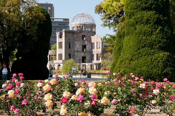 Roses in Front of Atomic Bomb Dome - Hiroshima, Japan