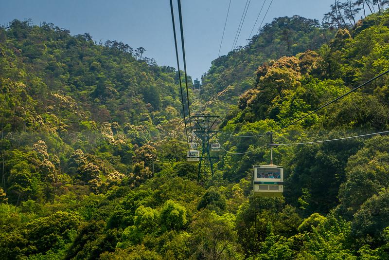 Views from the cable car going to the top of Miyajima Island! Miyajima Island, Hiroshima, Japan.