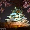 "<a target=""NEWWIN"" href=""http://en.wikipedia.org/wiki/Osaka_Castle"">Osaka Castle</a> at night, Osaka, Japan"