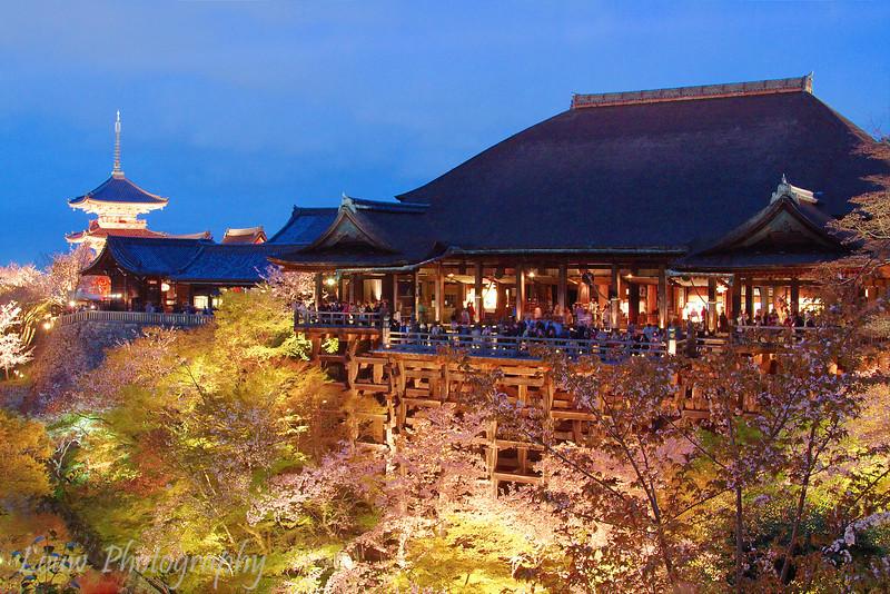 "<a target=""NEWWIN"" href=""http://en.wikipedia.org/wiki/Kiyomizu-dera"">Kiyomizu-dera</a> temple at night during sakura season, Kyoto, Japan"