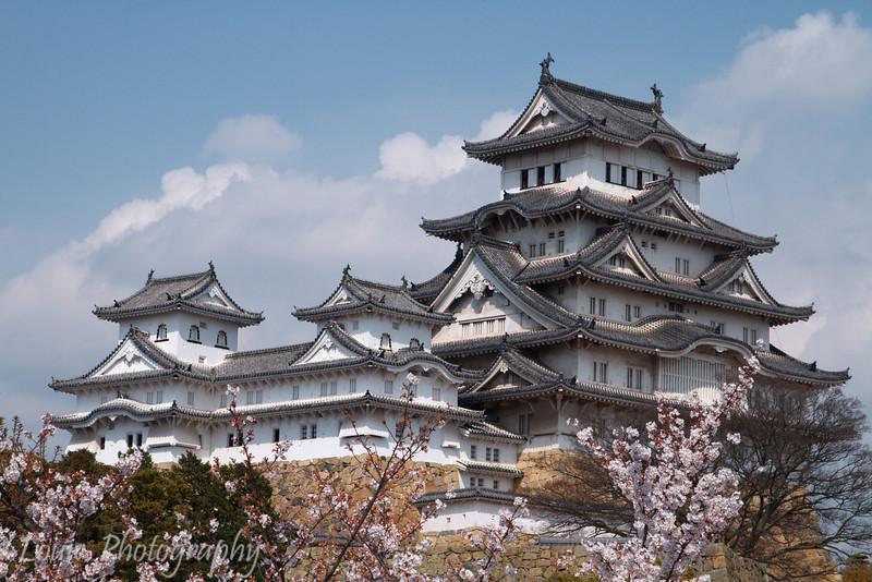 "<a target=""NEWWIN"" href=""http://en.wikipedia.org/wiki/Himeji_Castle"">Himeji Castle</a> during sakura season, Himeji, Japan"