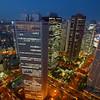 View of Shinjuku district at dusk, Tokyo, Japan