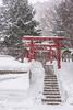 Shinto Shire