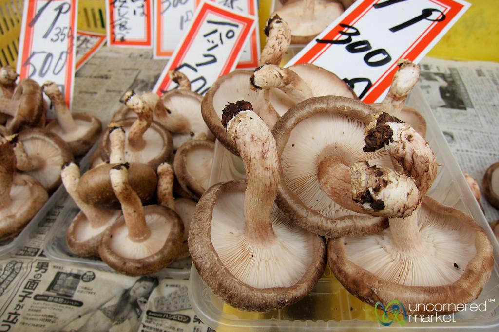 Fresh Mushrooms at Takayama - Japan