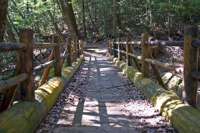 Wooden bridge in Kirishima National Park in Kirishima, Japan