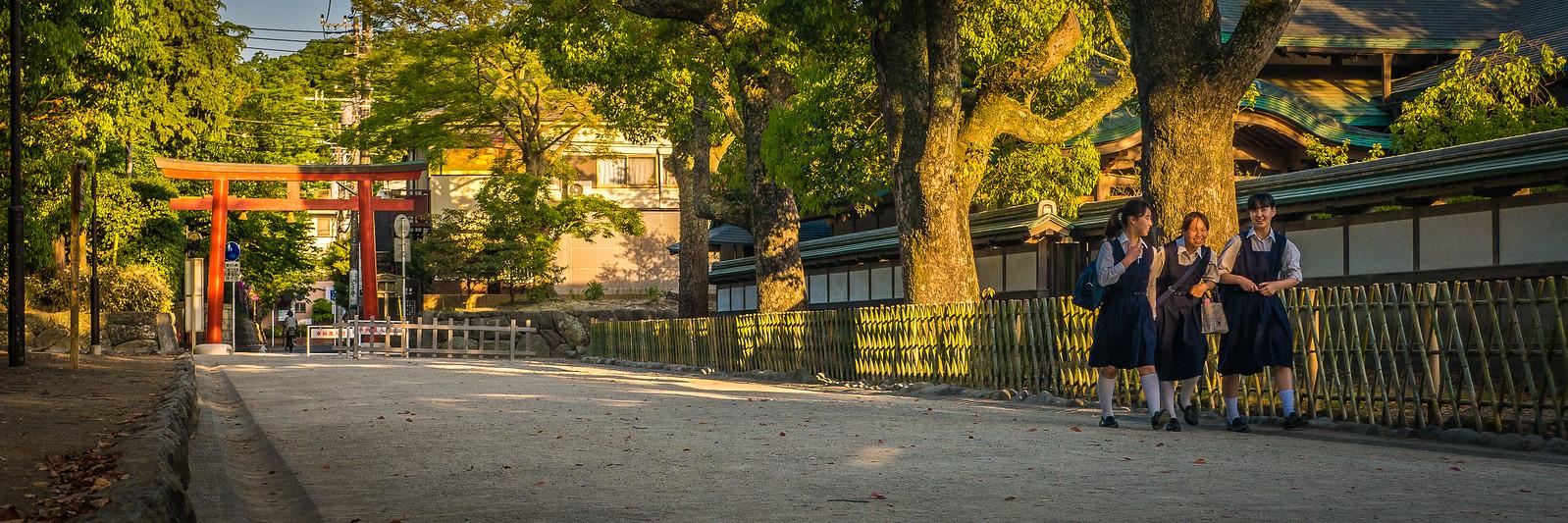 Tsurugaoka Hachiman-gū Temple