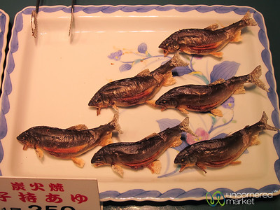 Dried Fish, All in a  Row - Kanazawa, Japan