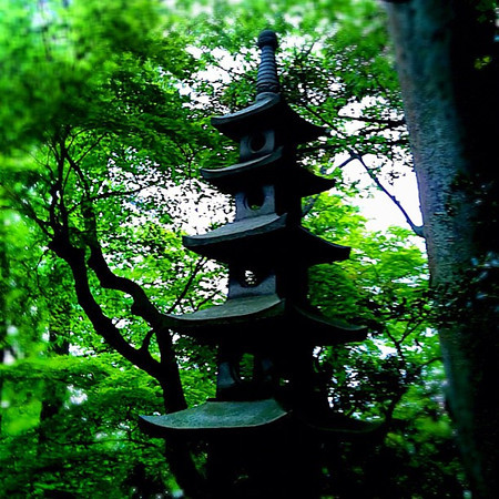 A walk through Kenrokuen garden - Kanazawa, Japan #dna2japan #gadv