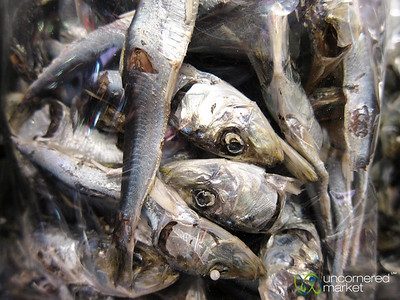 Dried Fish at Kanazawa Market - Japan