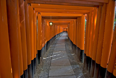 The covered path in Fushimi-inari Shrine in Kyoto, Japan