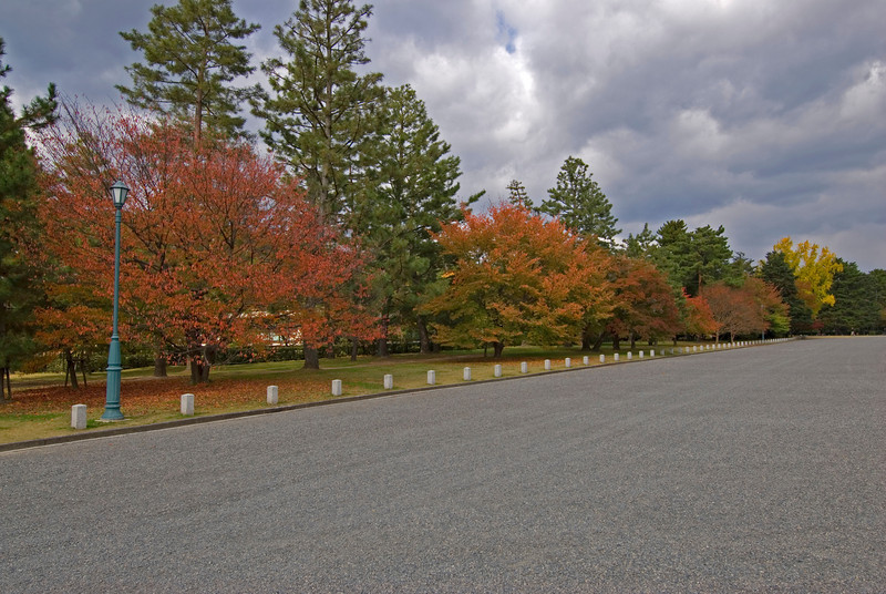 Beautiful autum trees along a road in Imperal Palace in Kyoto, Japan
