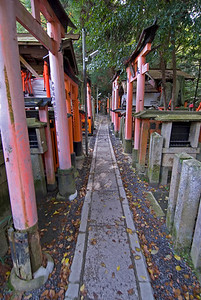 Long and narrow path in Fushimi-inari Shrine in Kyoto, Japan