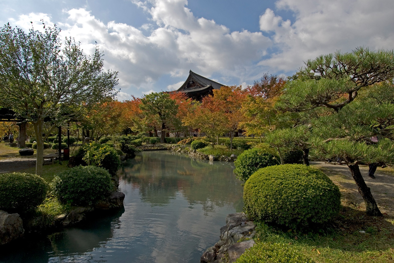 Closer look of pond and garden near Toji Temple in Kyoto, Japan