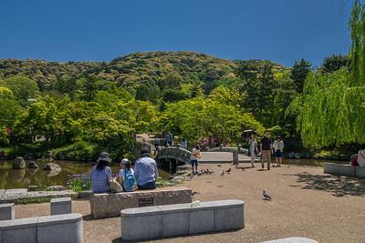 Maruyama-koen Park in the Southern Higashiyama Sightseeing District