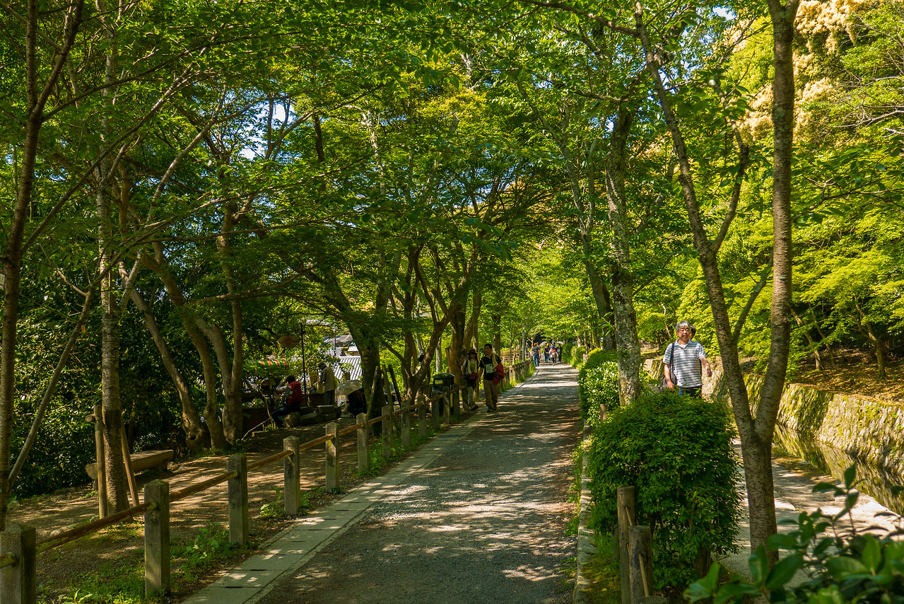 The pretty Path of Philosophy in Northern Higashiyama