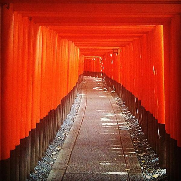 Morning at Fushimi Inari shrine - Kyoto, #Japan #dna2japan #gadv