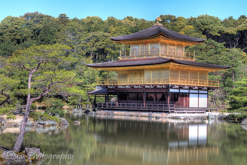 "<a target=""NEWWIN"" href=""http://en.wikipedia.org/wiki/Kinkaku-ji"">Kinkaku-ji</a> temple (Golden Pavilion), Kyoto, Japan"