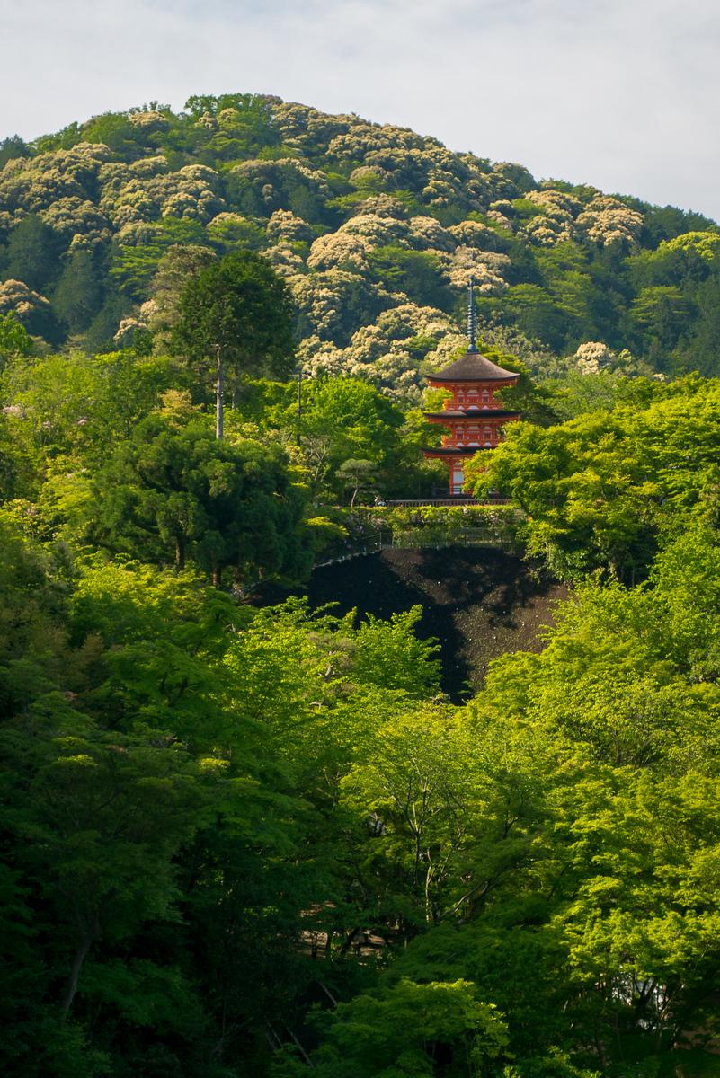 Views from the main balcony Kiyomizu-dera temple