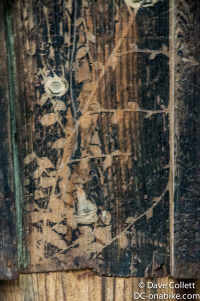 Shadow of plants on wood from the a-bomb blast
