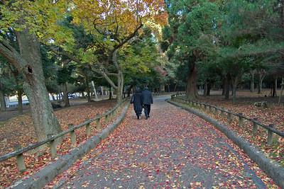 Couple wearing all-black strolling in Park in Nara, Japan