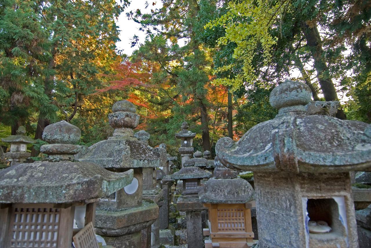 Stone lanterns and colorful leaves at Kasuga Shrine in Nara, Japan