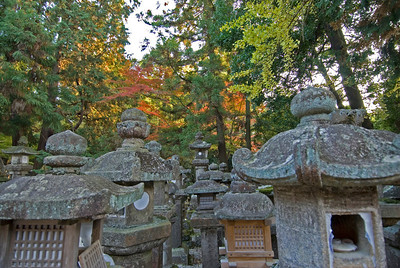 Stone lanterns and colorful leaves at Kasuga Shrine in Nara, Japan