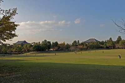 Park with Todaiji Temple in Background in Nara, Japan
