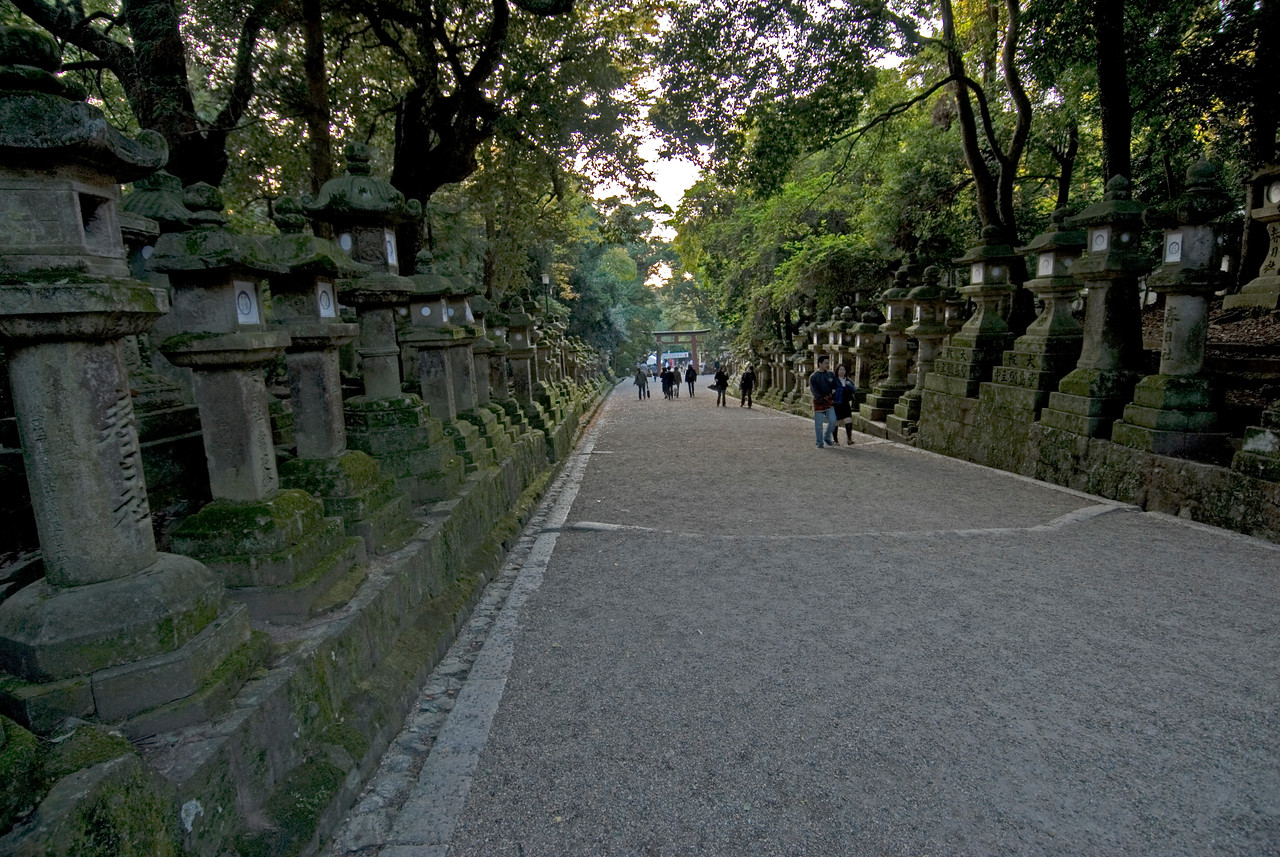 Lantern Path at Kasuga Shrine in Nara, Japan