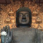 Giant Buddha Statue – Nara, Japan – Photo