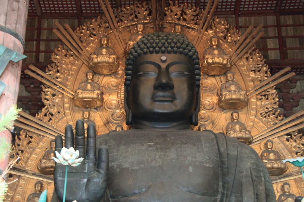 Giant Buddha Statue - Nara, Japan - Photo