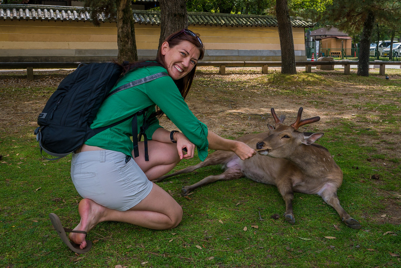 Feeding the adorable bowing deer!