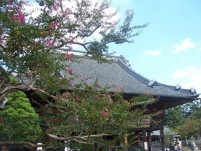 2005, at Daihonzan Naritasan Shinshoji Temple, Narita, Japan.  It's only a short train ride from the Narita Airport station,  if you have a long layover it's a good place to visit.