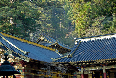 Roof and canopy at temple in Nikko, Japan