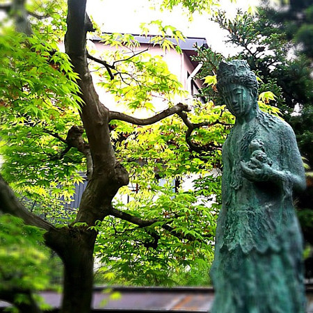 Serenity at Hida Kokubunji Temple - Takayama, Japan #dna2japan #gadv