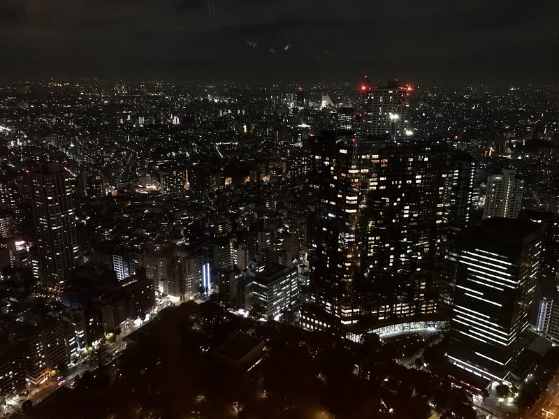 view from the Metropolitan Government Building Tokyo