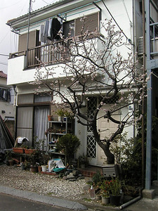 a home, Shimomaruko Station area March 2004.