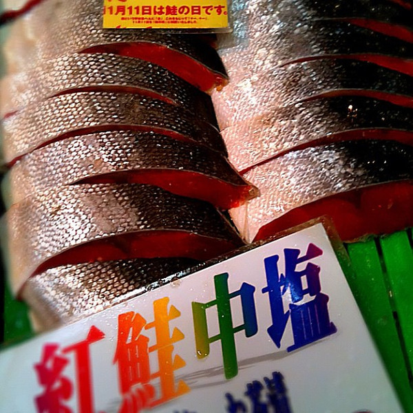Raw fish on sale - Tsukiji market, #Tokyo #Japan #dna2japan