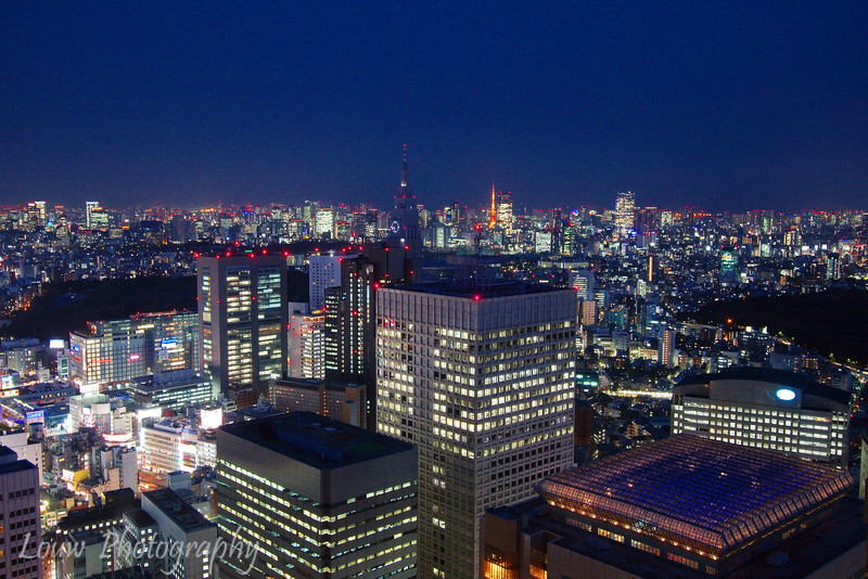 View from Tokyo Metropolitan Government Office at dusk, Tokyo, Japan