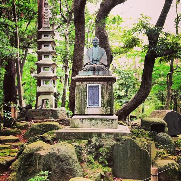 The inimitable light of a Japanese garden - Naritasan Shinshoji Temple #Japan