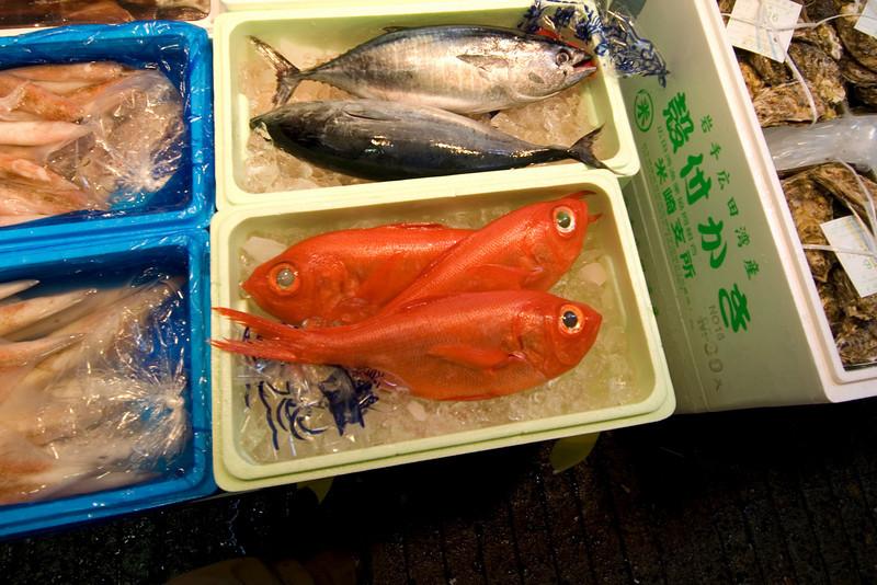 Red snapper and other fish sold at Tsukiji Fish Market, Tokyo, Japan