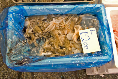 Octopus inside a container in Tsukiji Fish Market, Tokyo, Japan