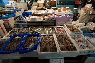 Squid and fish at a vendor stall in Tsukiji Fish Market, Tokyo, Japan