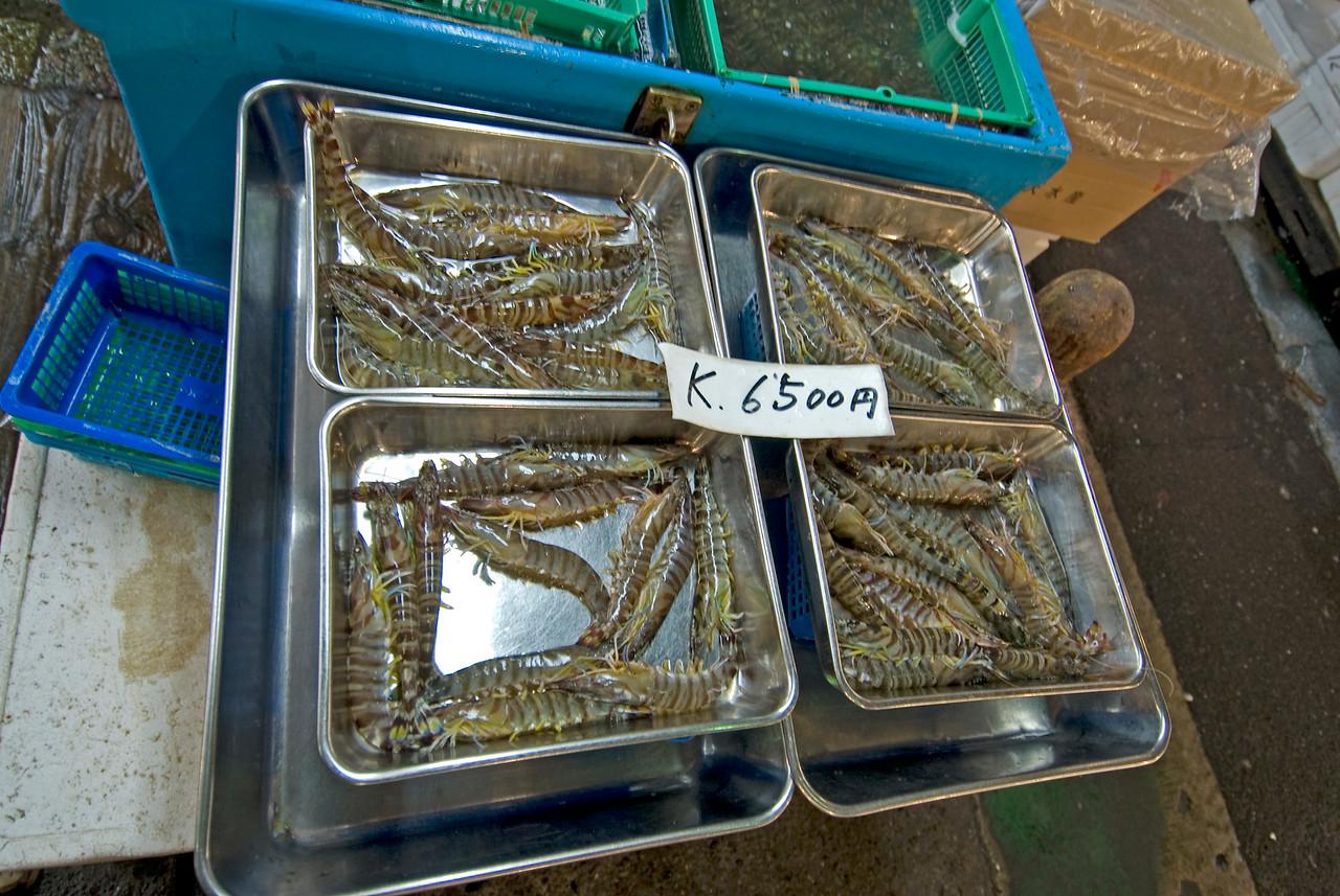 Prawns on trays at Tsukiji Fish Market, Tokyo, Japan