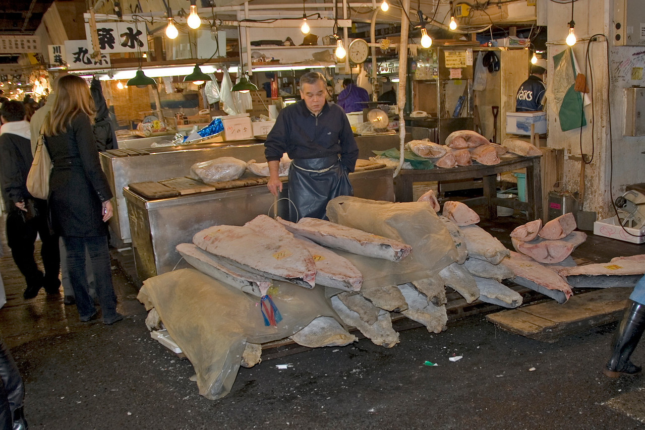 Vendor with Frozen Tuna at Tsukiji Fish Market, Tokyo, Japan